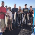 Striped bass, sea bass, and blues are just a few of the species you can catch.
