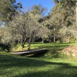 Photo de Cedars Mount View