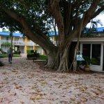 Photo of Magnuson Hotel Marina Cove