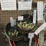 local shop, selling fresh Wasabi