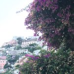 Positano from the balcony.