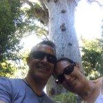 Tane Mahuta! (about 110km South of Ahipara, Waipoua Kauri Forest)