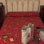 Photo of Fujiyama Bed & Breakfast