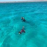 Snorkelling in reef