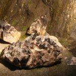 Photo of Grotte de Glace