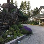 Photo de Sooke Harbour House Resort Hotel