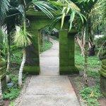 Foto de Prana Rainforest Retreat