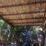Photo of Camping Campo al Fico