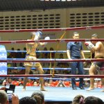 Muay Thai kickboxing contest
