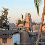 Morning view across Hampi from roof.