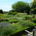 Jardin aromatique en terrasse