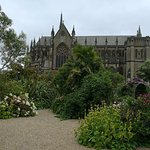 Garden views to cathedral