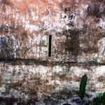 Photo de Pousada Portas da Amazônia