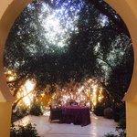 Dine under olive trees