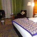 래디슨 블루 호텔 아흐메다바드 사진