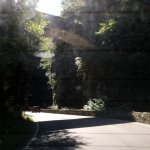 Foto de Strada della Forra