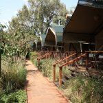Photo of Wildebeest Eco Camp
