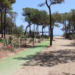 Foto di Villaggio Mondial Camping
