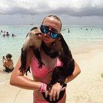 Monkeying around:-)