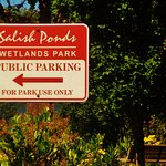 signs in parking lot for people visiting the Salish Ponds