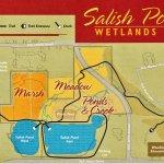 Map of Salish Ponds area