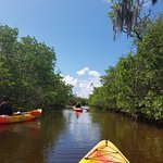 Coming out of the mangrove tunnel. The waterway is pretty wide.