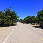 Moonstone Drive 16