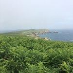 Photo of Saltee Islands