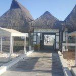 Bally Hoo Restaurant & Margaritas Bar