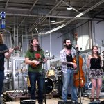 Live music performance during a brewery event