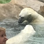 Photo de Lincoln Park Zoo
