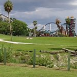 No where else can you see nature and roller coasters in perfect harmony