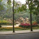 A garden along the path