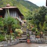 Foto de Jardines de Chamana