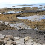 Tidal Pools near Strandarkirkja