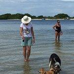 Foto de Dog Beach