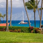 Photo of Napili Shores Maui by Outrigger