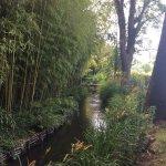 Monet's Garden Stream