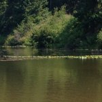 Peace and Calm at Lost Lake
