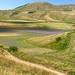 Foto di Piana di Castelluccio di Norcia