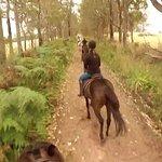 Riding along a country lane!