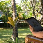 Wireless Internet Access from Your Balcony