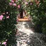 Photo of Villa Knossos