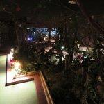 The jungle minigolf