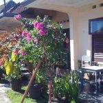 home to stay at Bendesa Mas Inn, Munduk, Bali