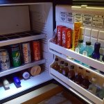 auto charge fridge