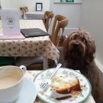Wonderful shop. Excellent lemon drizzle - all cakes look fab AND dogs allowed. 10 out of 10. :-)