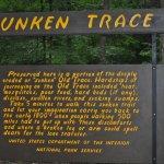 Ancient History, Natchez Trace
