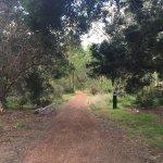 Antonio Park