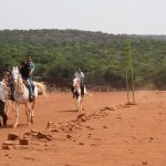Lake side horse ride also available in Mahableshwar